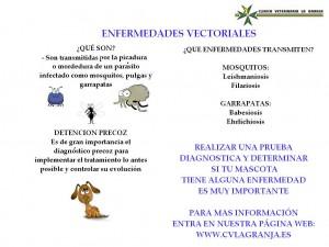 ENFERMEDADES VECTORIALES 1